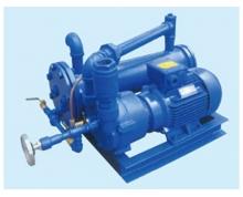 2BW系列水环式真空泵成套装置